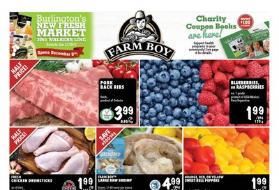 Farm Boy (Brantford, Cambridge, Hamilton and Kitchener) Flyer December 5 to 11