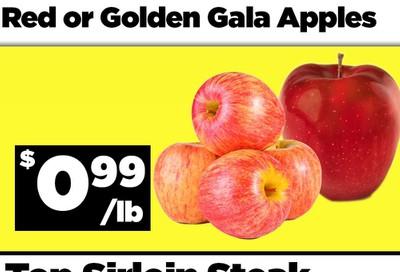 Basha Foods International Flyer September 23 and 24