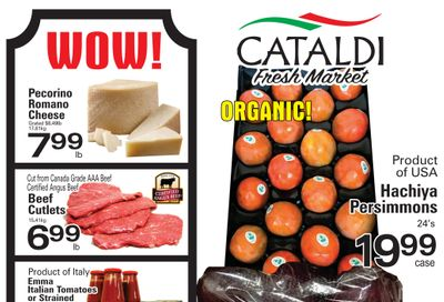 Cataldi Fresh Market Flyer October 28 to November 3