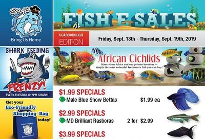 Big Al's (Scarborough) Weekly Specials September 13 to 19