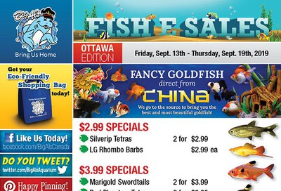 Big Al's (Ottawa East) Weekly Specials September 13 to 19