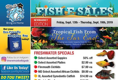 Big Al's (Newmarket) Weekly Specials September 13 to 19