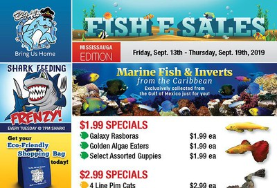 Big Al's (Mississauga) Weekly Specials September 13 to 19