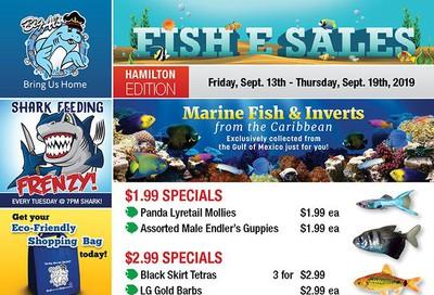Big Al's (Hamilton) Weekly Specials September 13 to 19