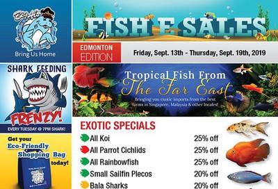 Big Al's (Edmonton) Weekly Specials September 13 to 19
