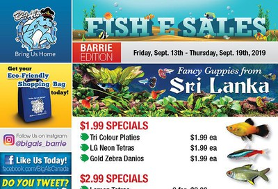 Big Al's (Barrie) Weekly Specials September 13 to 19