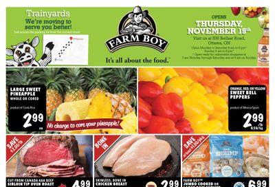 Farm Boy Flyer November 19 to 25