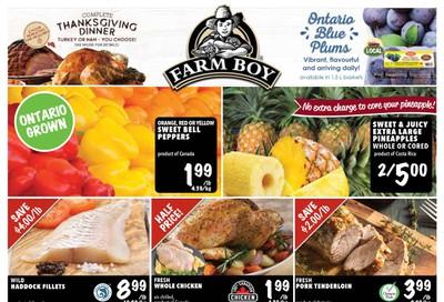Farm Boy (Brantford, Cambridge, Hamilton and Kitchener) Flyer September 19 to 25