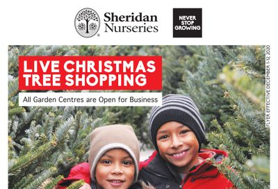 Sheridan Nurseries Flyer December 1 to 12