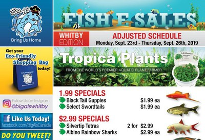 Big Al's (Whitby) Weekly Specials September 23 to 26