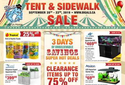 Big Al's Tent and Sidewalk Sale Flyer September 20 to 22