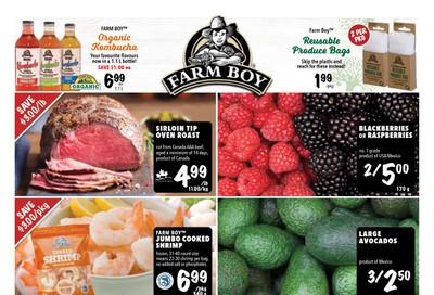 Farm Boy Flyer January 2 to 8