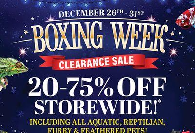 Big Al's Boxing Week Flyer December 26 to 31, 2020