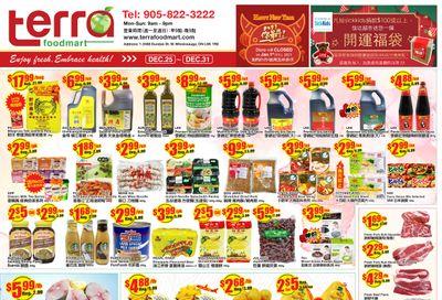 Terra Foodmart Flyer December 25 to 31