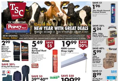 TSC Stores Flyer December 31 to January 7