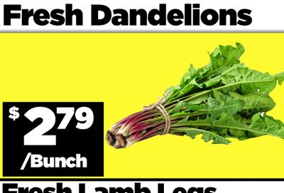 Basha Foods International Flyer December 31 and January 1