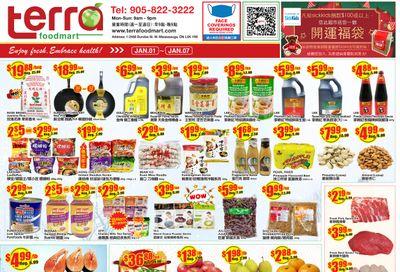 Terra Foodmart Flyer January 1 to 7