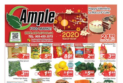 Ample Food Market Flyer January 10 to 16