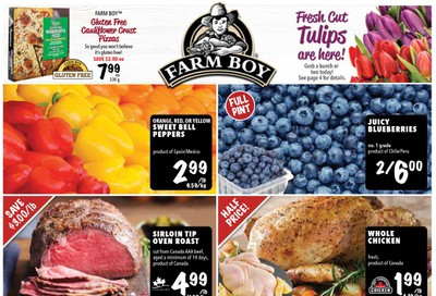 Farm Boy Flyer January 16 to 22