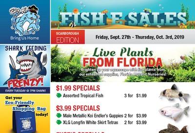 Big Al's (Scarborough) Weekly Specials September 27 to October 3