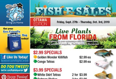 Big Al's (Ottawa East) Weekly Specials September 27 to October 3