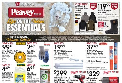 TSC Stores Flyer January 15 to 21