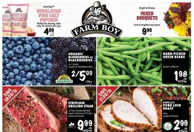 Farm Boy Flyer January 23 to 29