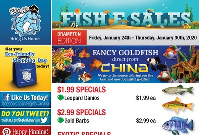 Big Al's (Brampton) Weekly Specials January 24 to 30
