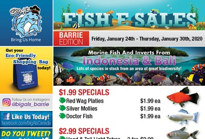 Big Al's (Barrie) Weekly Specials January 24 to 30