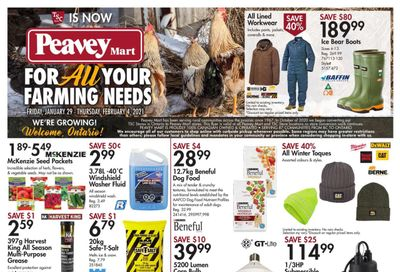 TSC Stores Flyer January 29 to February 4