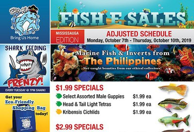 Big Al's (Mississauga) Weekly Specials October 7 to 10