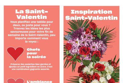 Provigo Flyer February 11 to 17