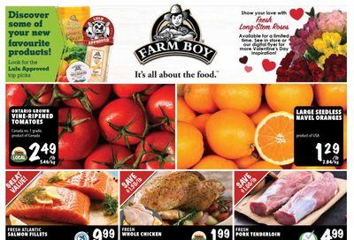 Farm Boy Flyer February 11 to 17