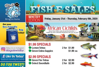 Big Al's (Whitby) Weekly Specials January 31 to February 6