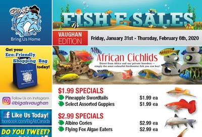 Big Al's (Vaughan) Weekly Specials January 31 to February 6