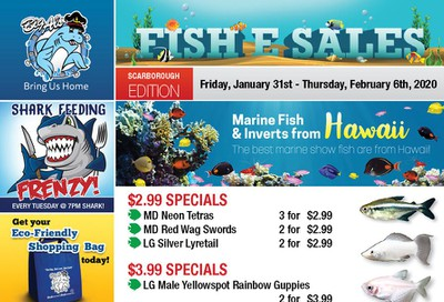 Big Al's (Scarborough) Weekly Specials January 31 to February 6