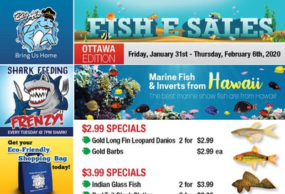 Big Al's (Ottawa East) Weekly Specials January 31 to February 6