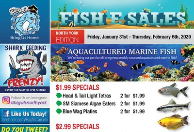 Big Al's (North York) Weekly Specials January 31 to February 6