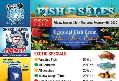 Big Al's (Edmonton) Weekly Specials January 31 to February 6