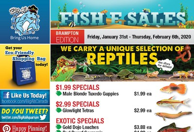 Big Al's (Brampton) Weekly Specials January 31 to February 6