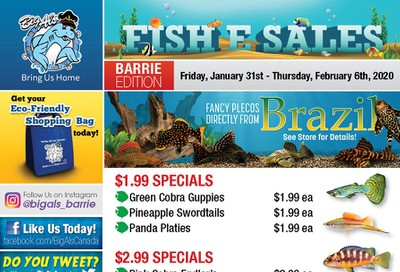 Big Al's (Barrie) Weekly Specials January 31 to February 6