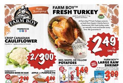 Farm Boy (Brantford, Cambridge, Hamilton, Kitchener) Flyer October 10 to 16