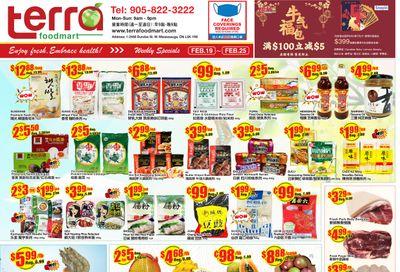 Terra Foodmart Flyer February 19 to 25
