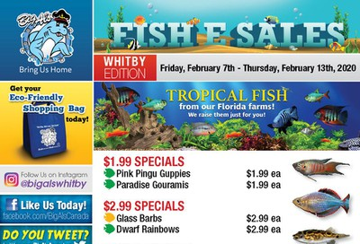 Big Al's (Whitby) Weekly Specials February 7 to 13