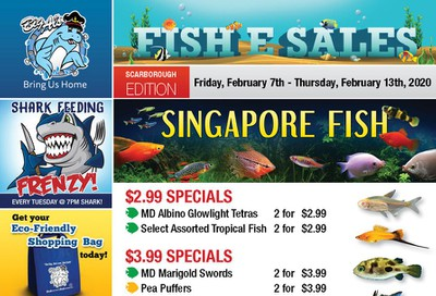 Big Al's (Scarborough) Weekly Specials February 7 to 13