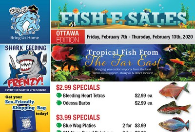 Big Al's (Ottawa East) Weekly Specials February 7 to 13