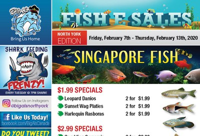 Big Al's (North York) Weekly Specials February 7 to 13