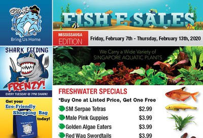 Big Al's (Mississauga) Weekly Specials February 7 to 13