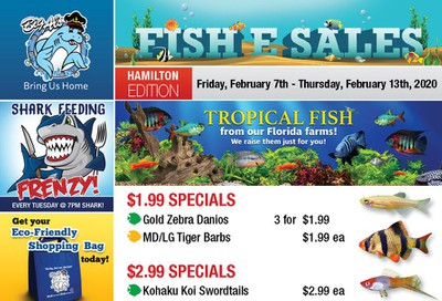 Big Al's (Hamilton) Weekly Specials February 7 to 13