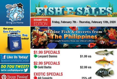 Big Al's (Brampton) Weekly Specials February 7 to 13